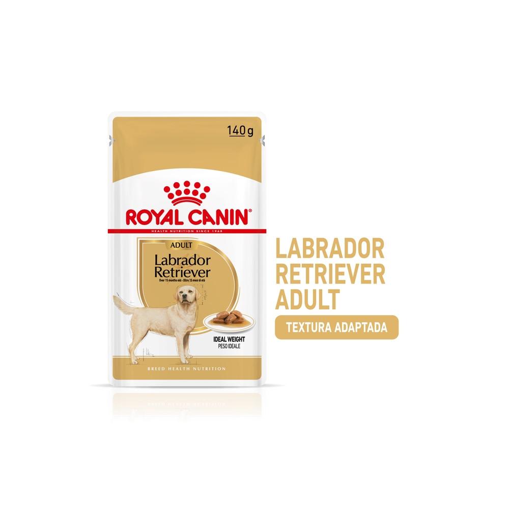 Royal Canin Labrador Retriever Cão adulto - Em molho