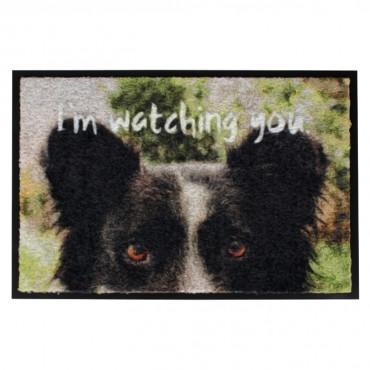 "Duvo + Tapete ""I'm Watching You"""