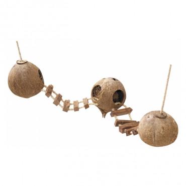 Duvo+ Globos de coco com escada suspensa para roedores