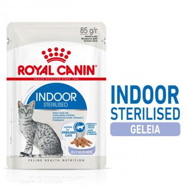 Royal Canin Indoor Gato Esterilizado - Em gelatina
