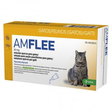 Amflee Gato