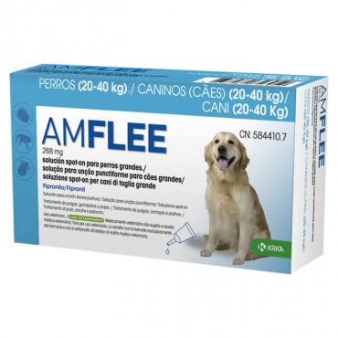 Amflee Cão 20 - 40 kg