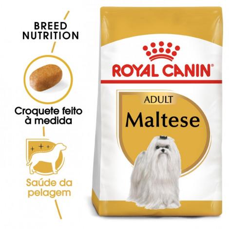 Royal Canin Maltese Cão Adulto