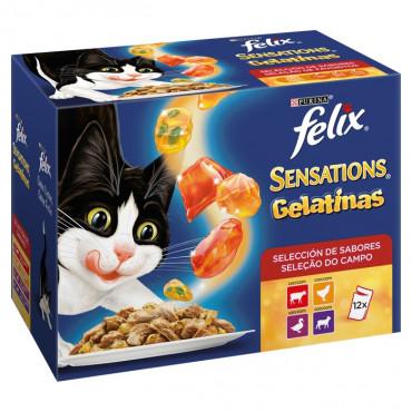 Felix Sensations Gelatinas - Seleção do campo Pack 12