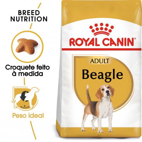 Royal Canin Beagle Cão Adulto