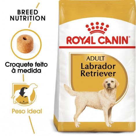 Royal Canin Labrador Retriever Cão Adulto