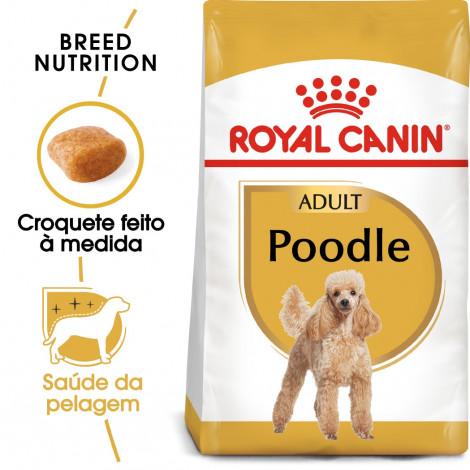 Royal Canin Poodle Cão Adulto