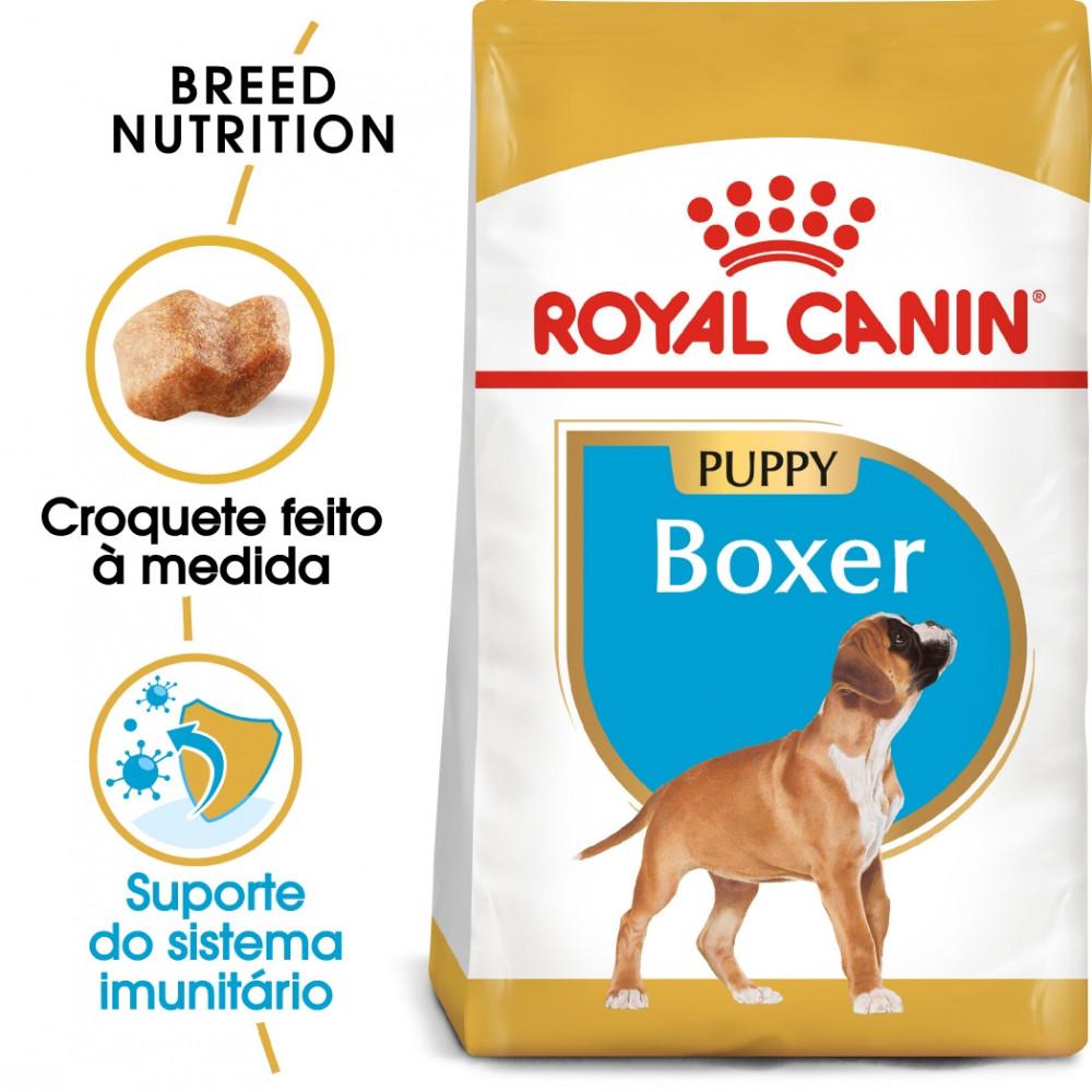 Royal Canin Boxer Cão Puppy