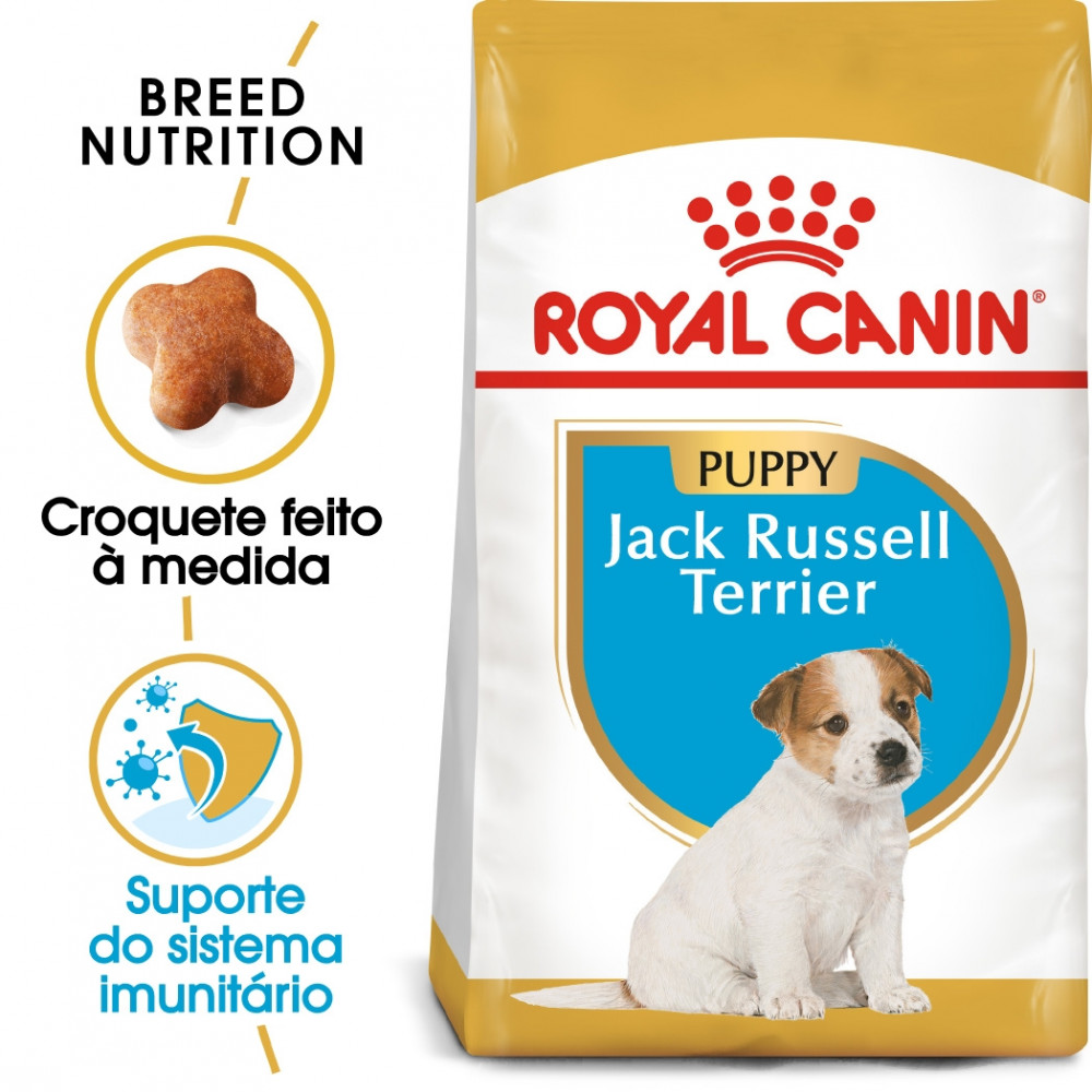 Royal Canin Jack Russell Terrier Cão Puppy