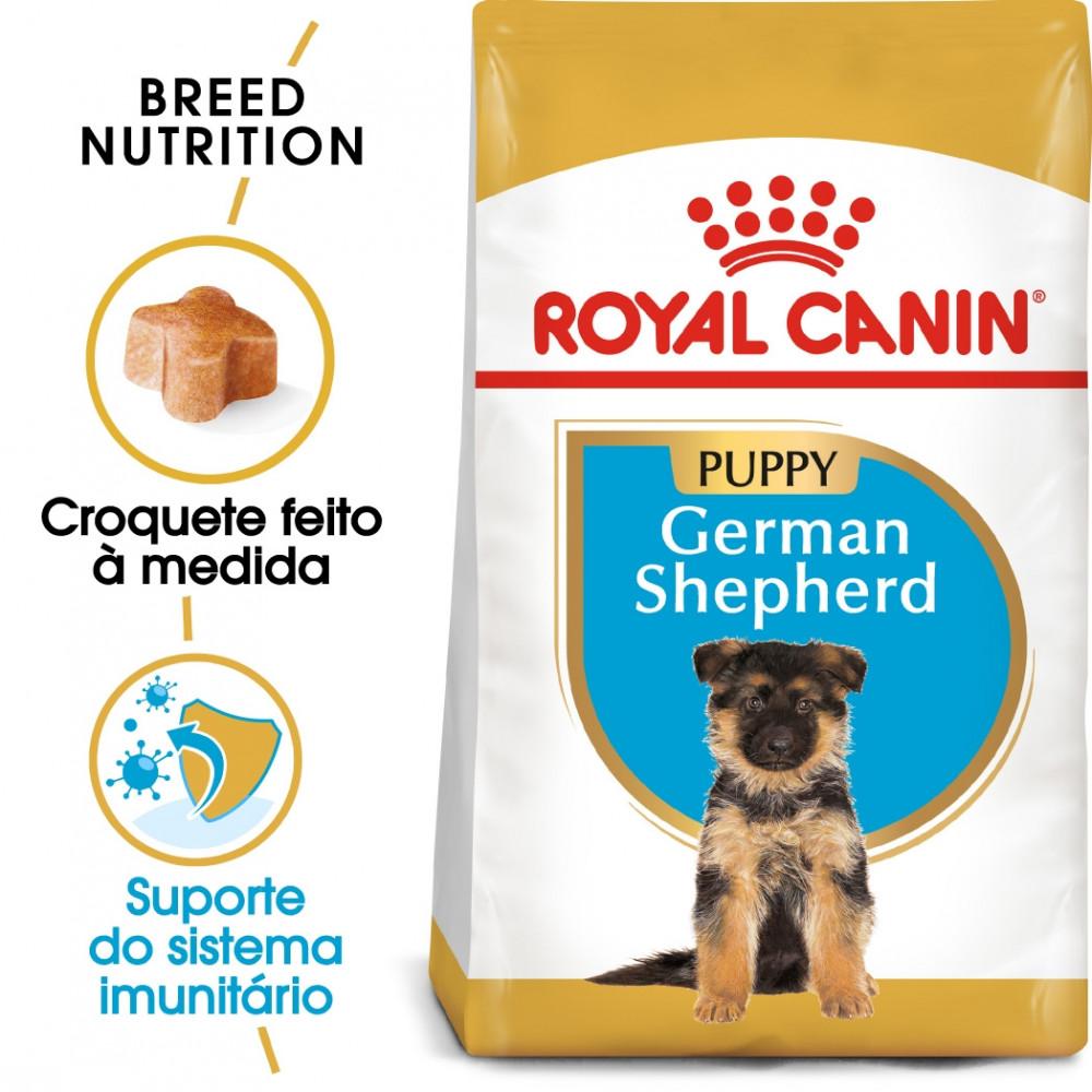 Royal Canin Pastor Alemão Cão Puppy