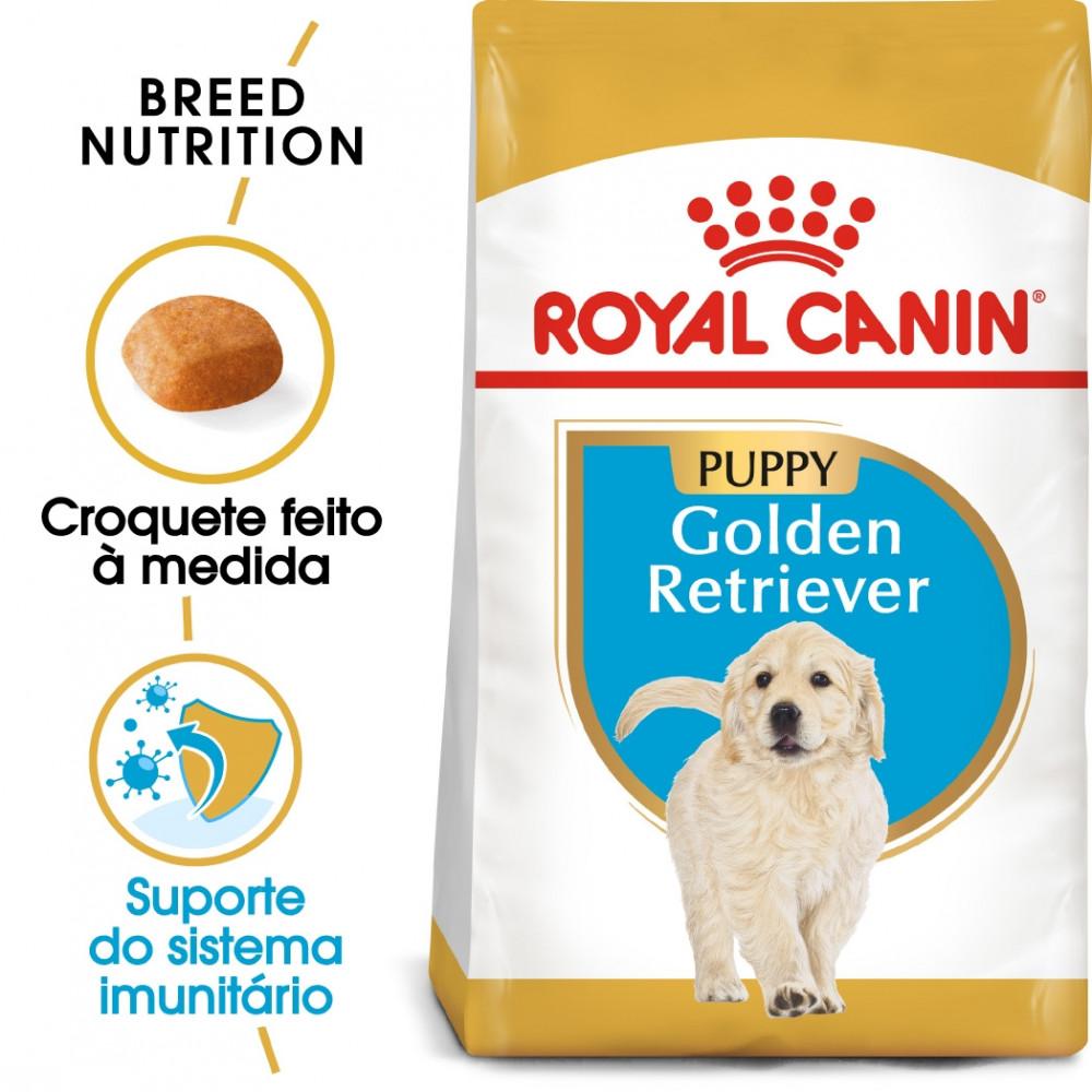 Royal Canin Golden Retriever Cão Puppy