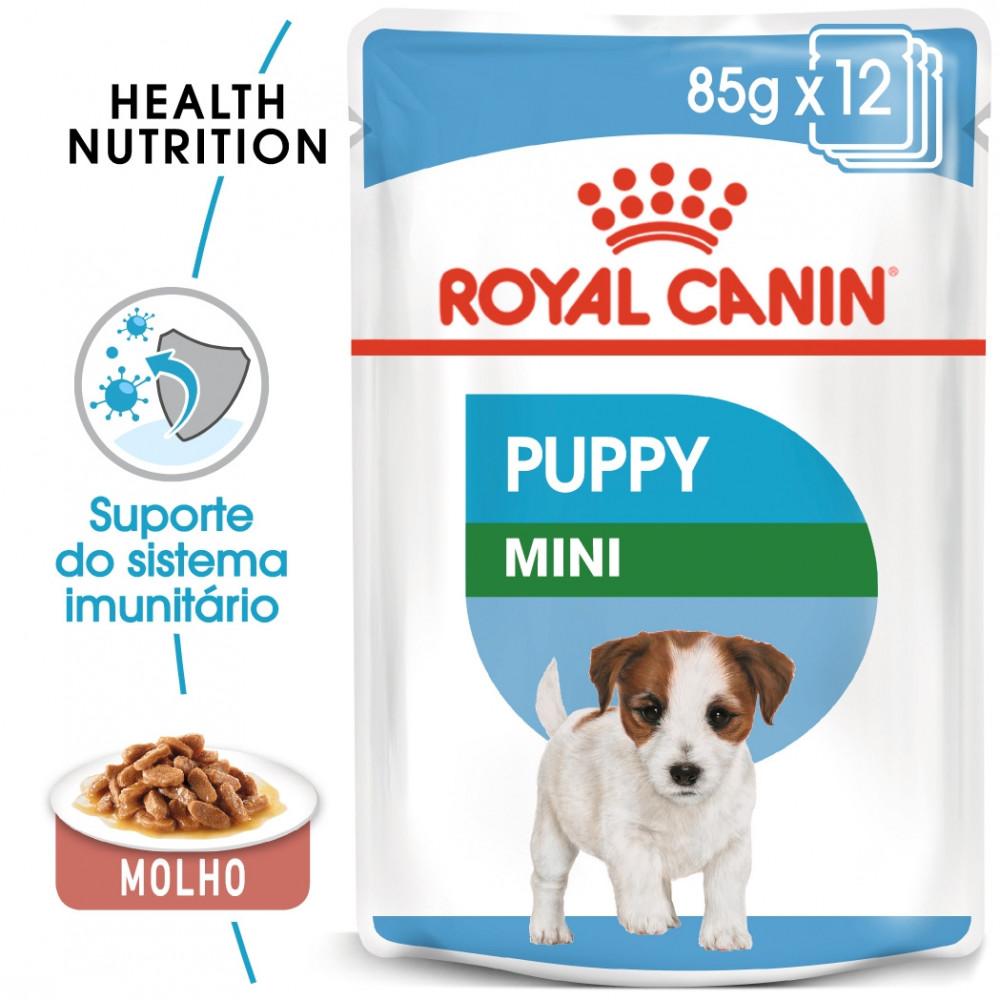 Royal Canin Mini Cão Puppy - Em molho