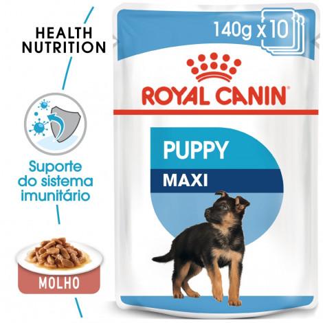Royal Canin Maxi Puppy - Em molho