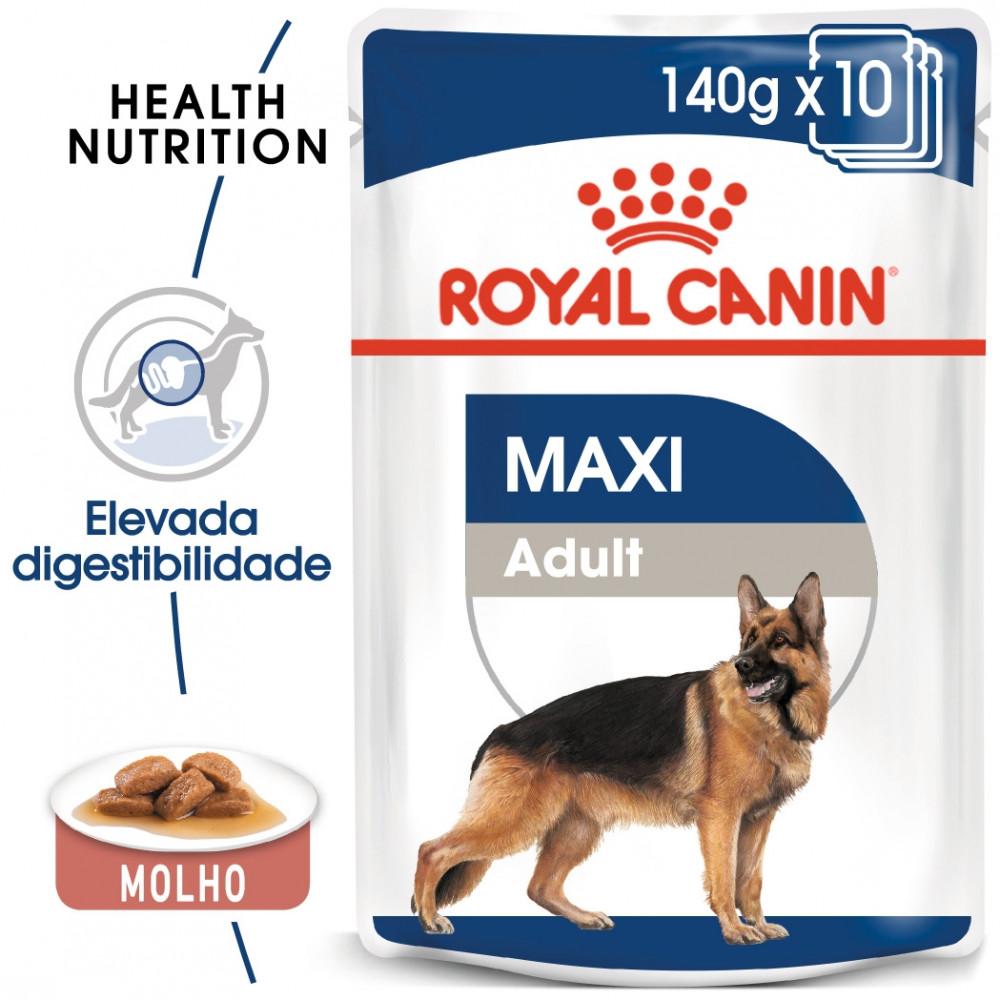 Royal Canin Maxi Cão adulto - Em molho
