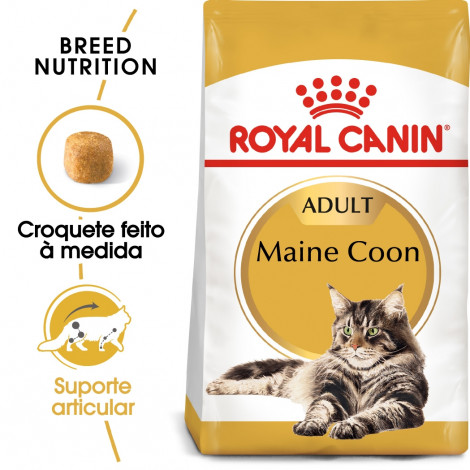 Royal Canin Maine Coon Gato adulto