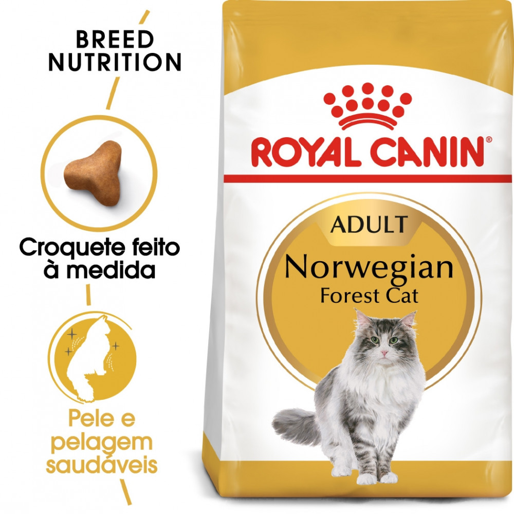 Royal Canin Norwegian Forest Gato adulto