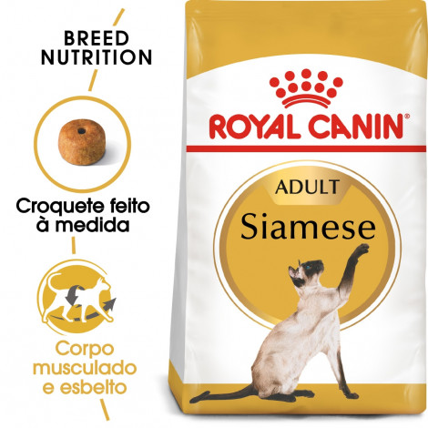 Royal Canin Siamese Gato adulto