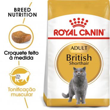 Royal Canin British Shorthair Gato adulto