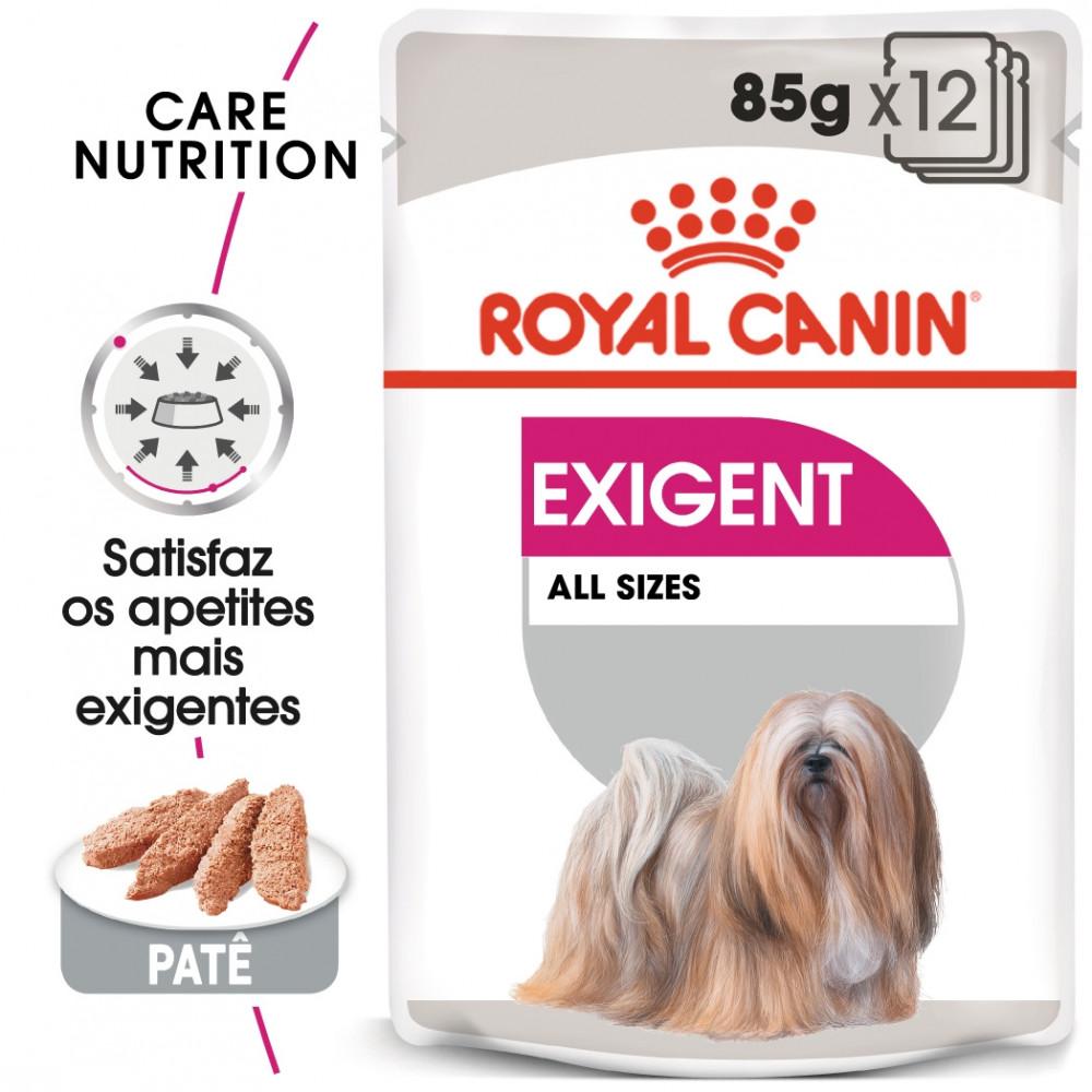 Royal Canin Exigent Cão adulto - Em patê