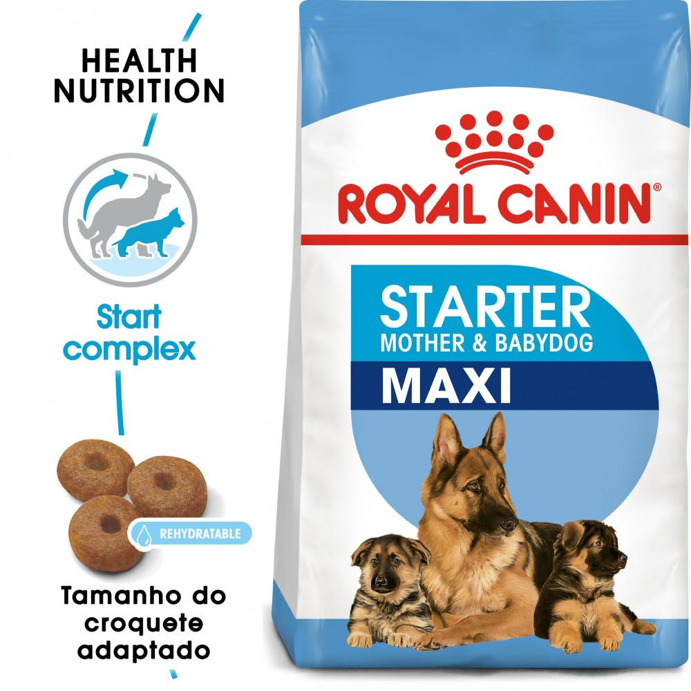 Royal Canin Cão Maxi Starter Mother & Babydoog