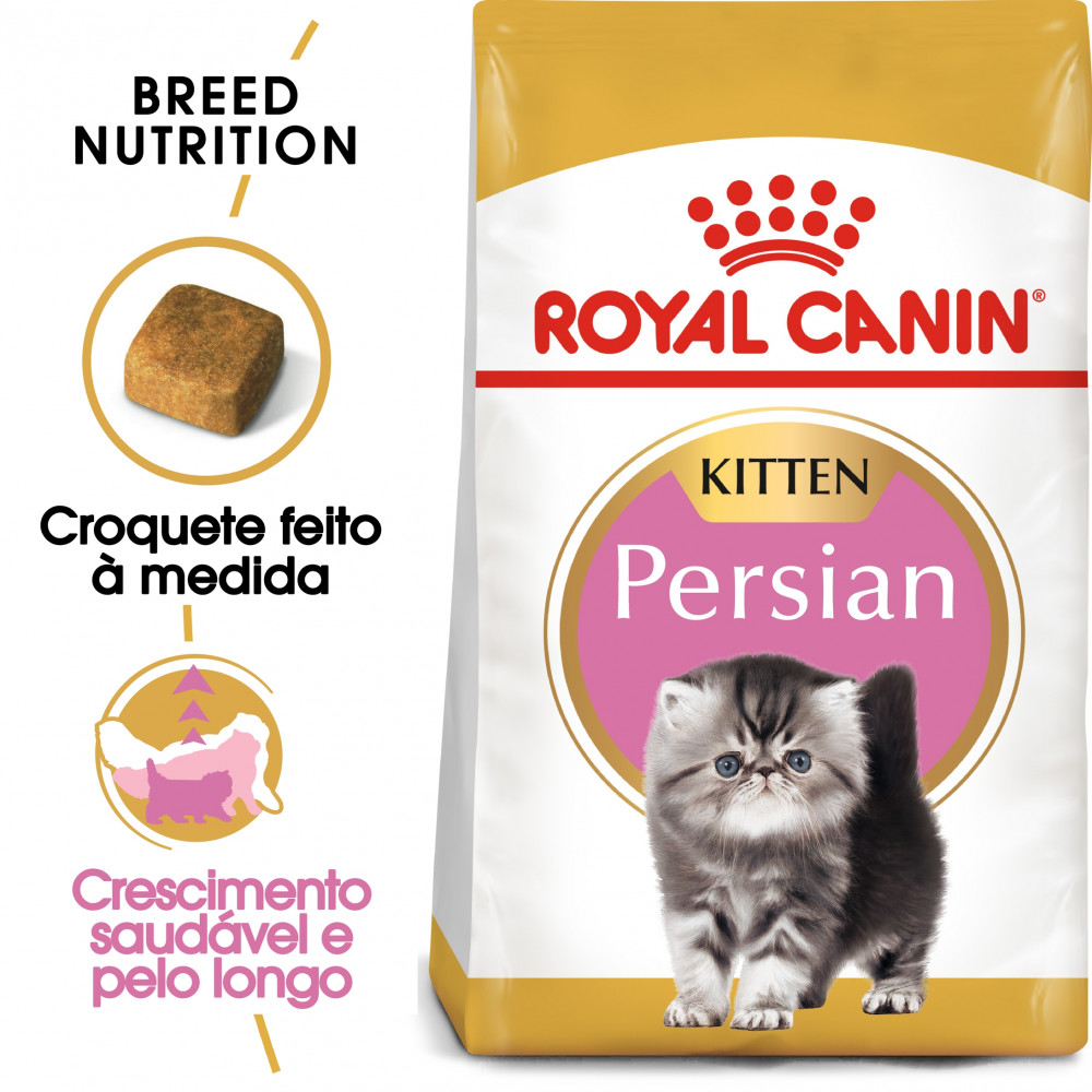 Royal Canin Persian Gato Kitten