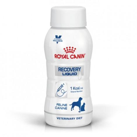 Royal Canin Recovery Liquid