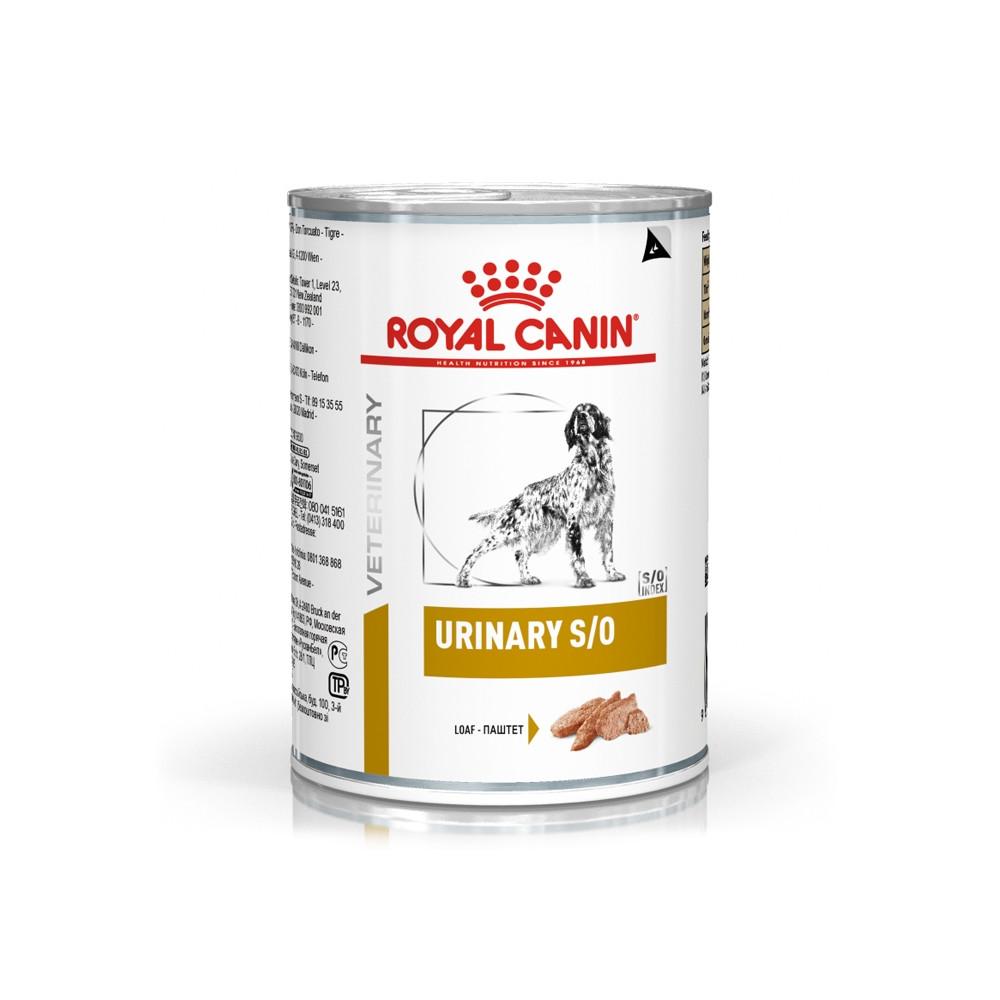 Royal Canin Urinary S/O Cão - Em patê