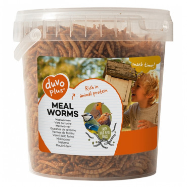 Duvo+ Meal Worms Snacks para aves selvagens