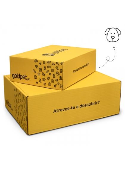 GoldBox - Cão Puppy Medium/Large