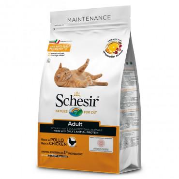 Schesir Maintenance Gato adulto - Frango