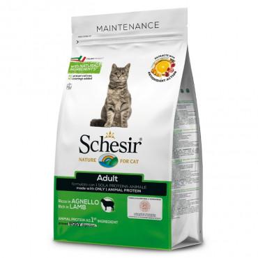Schesir Maintenance Gato adulto - Cordeiro