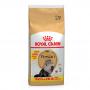 Ração para gato Royal Canin Persian