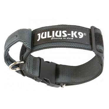 Coleira c/ Pega JULIUS-K9® COLOR & GRAY