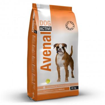 Avenal Active Cão adulto