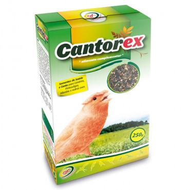 Cantorex Sementes de saúde e canto