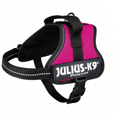 Julius K-9 Peitoral para cão - Azul turquesa