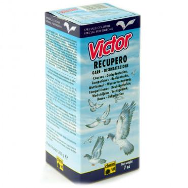 CHEMI-VIT Victor Recupero líquido