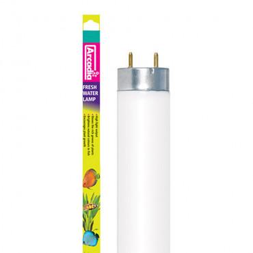 Arcadia Lâmpada Fresh Water fluorescente