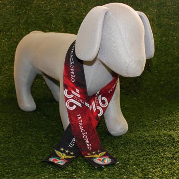 Faixa Oficial SL Benfica