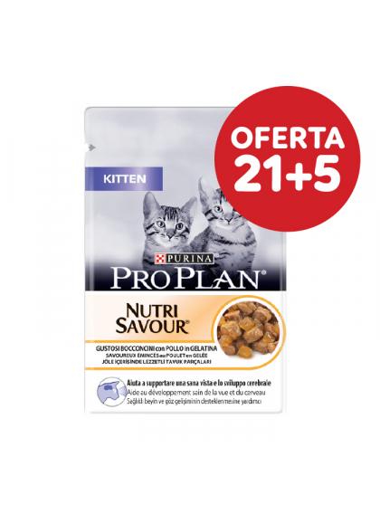 Pro Plan Nutrisavour Jelly Kitten - Frango