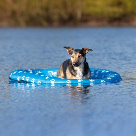 Bote insuflável para cães - Trixie
