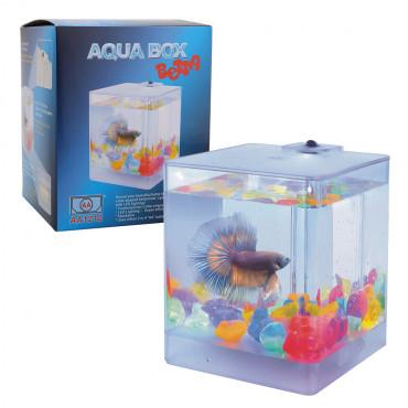 Aquário Betta - Aquabox