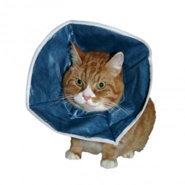 Colar Buster descartável para gato e cão pequeno
