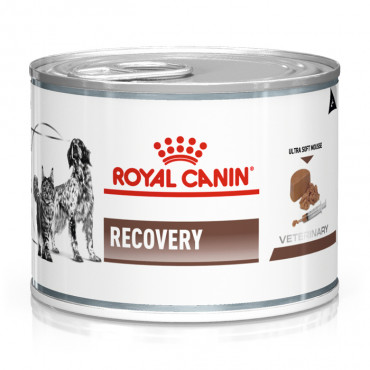 Royal Canin - Recovery para Cães e Gatos WET