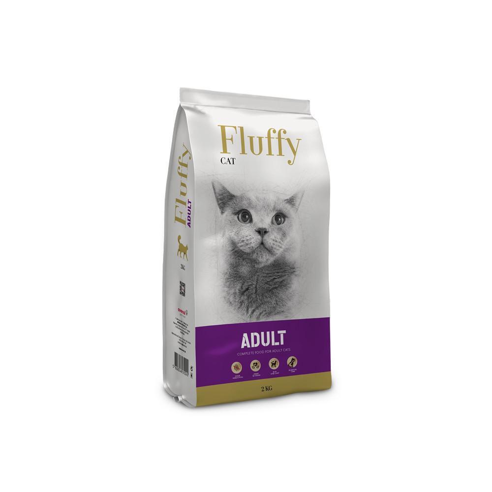 Fluffy Gato adulto
