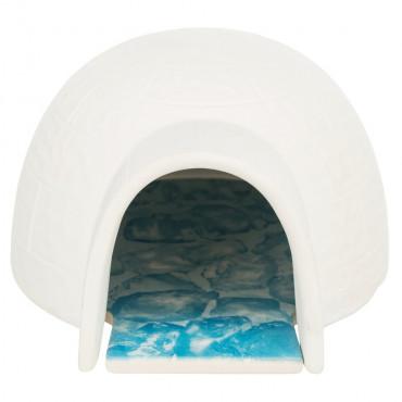 Iglu com placa de arrefecimento para pequenos roedores