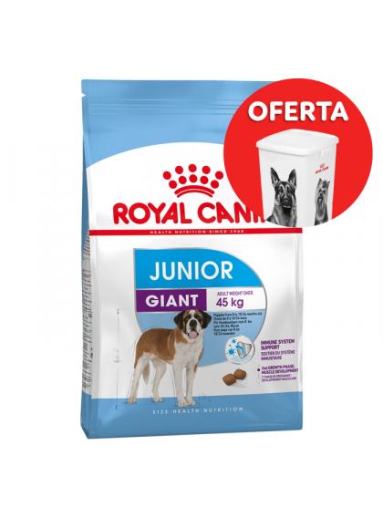 Royal Canin - Giant Junior - Ração seca - Goldpet