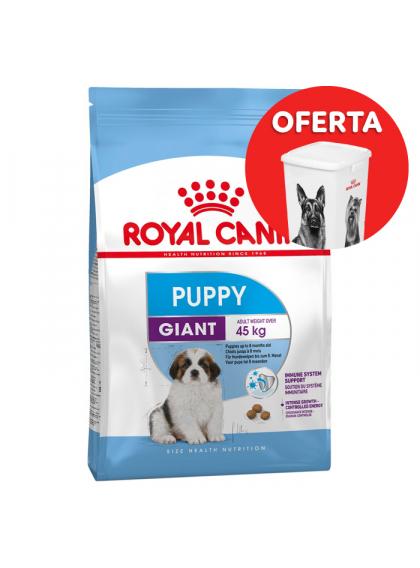 Ração para cão Royal Canin Giant Puppy