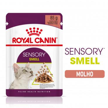 Royal Canin Sensory Smell Gato adulto - Em molho