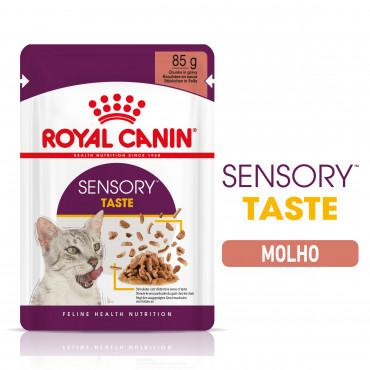 Royal Canin Sensory Taste Gato adulto - Em molho